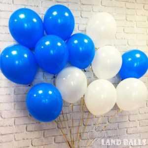 Шары «Синие и Белые» 35 см
